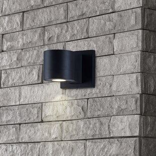 Ivy Bronx Waynoka Modern LED Outdoor Sconce