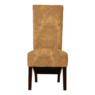Ramon Upholstered Formal Side Chair (Set of 2) by Langley Street