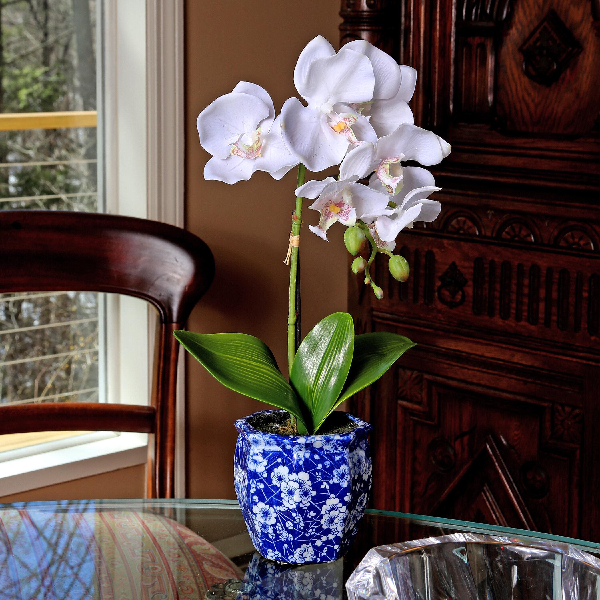 floral home decor orchid floral design wayfair.htm regency international phalaenopsis orchids floral arangements and  phalaenopsis orchids floral arangements