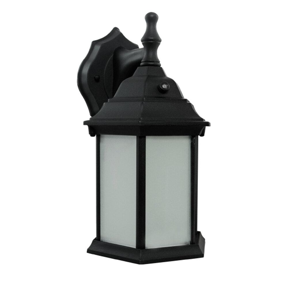 Efficientlighting 1 Light Outdoor Wall Lantern Wayfair