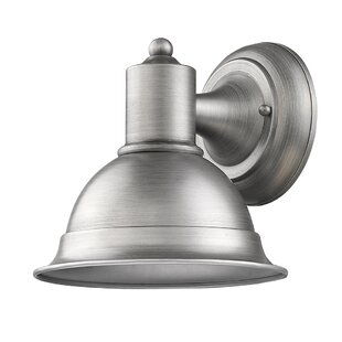 Breakwater Bay Edison 1-Light Outdoor Sconce
