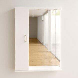 William Surface Mount Mirror Cabinet By Zipcode Design