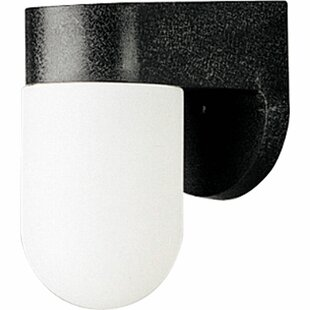 Affordable Mahomet 1-Light Outdoor Sconce By Winston Porter