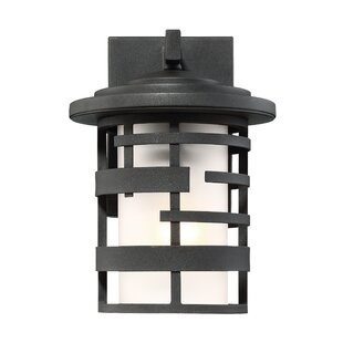 Bargain Neven Outdoor Wall Lantern By Ivy Bronx