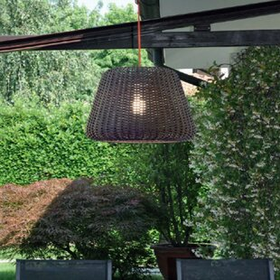 Ralph 1-Light Outdoor Pendant