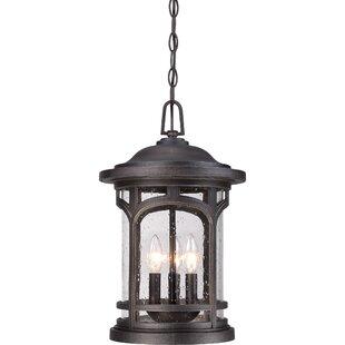 Longshore Tides Sheppard 3-Light Outdoor Hanging Lantern