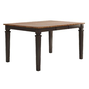 Bridlington Counter Height Extendable Dining Table by Three Posts