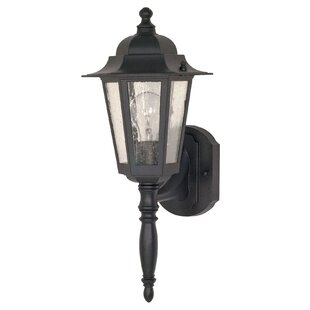 Alcott Hill Mayer Outdoor Wall Lantern