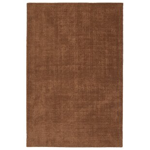 Borica Hand-Loomed Light Brown Indoor/Outdoor Area Rug