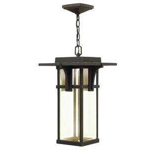 Read Reviews Manhattan 1-Light Outdoor Hanging Lantern By Hinkley Lighting