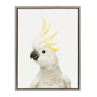'White and Yellow Cockatoo' Framed Art