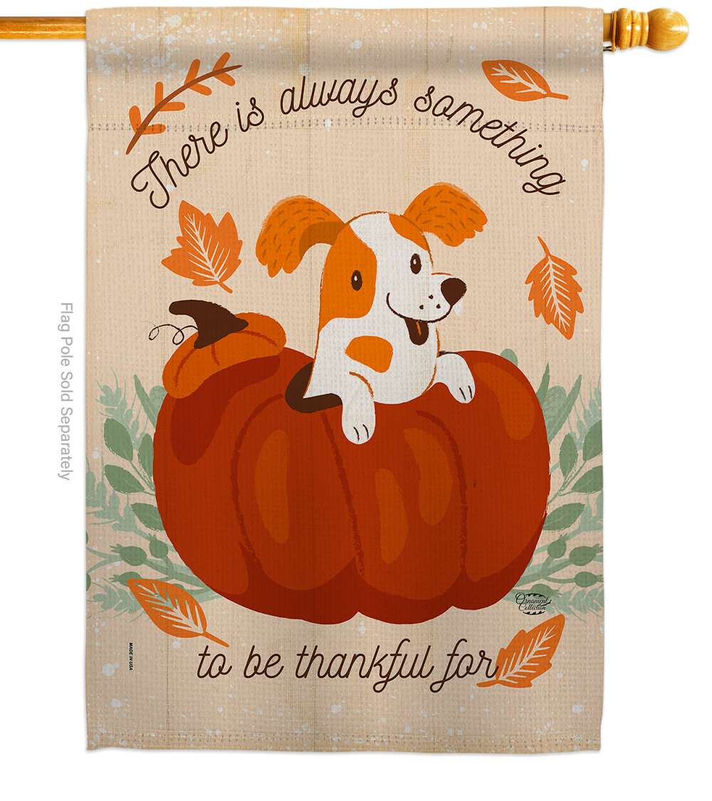 Ornament Collection Something Thanksful For 2 Sided Polyester 40 X 28 In House Flag Wayfair