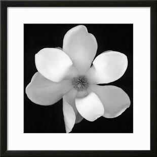 Black and white flower art wayfair black and white magnolia flower framed photographic print mightylinksfo