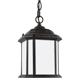 Darby Home Co Burtt 1-Light Outdoor Pendant