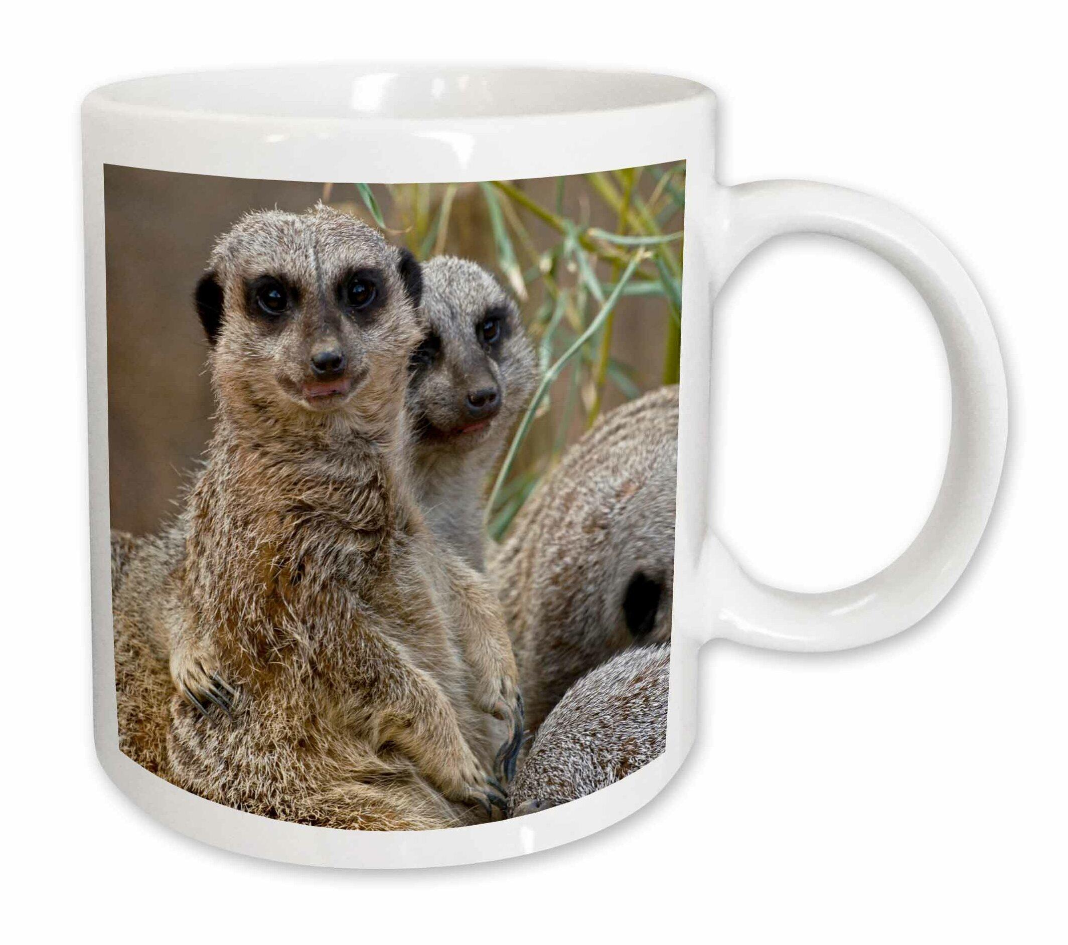 East Urban Home Meerkats Louisville Zoo Louisville Kentucky Coffee Mug Wayfair