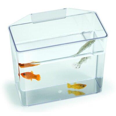 """Lees Aquarium & Pet Aquarium Specimen Container Tank Size: 7"""" H x 3.25"""" W x 6"""" D"""
