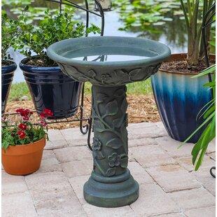 Wildon Home ® Vineyard Outdoor Birdbath