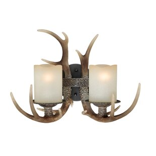 Best Choices Port Chester 2-Light Vanity Light By Loon Peak