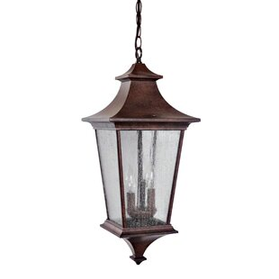 Best Chafin 3-Light Outdoor Hanging Lantern By Fleur De Lis Living