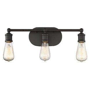 Laurel Foundry Modern Farmhouse Agave 3-Light Vanity Light Fixture
