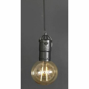 Deitz 1 Light Outdoor Pendant Image