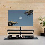 Brunhilda TV Stand for TVs up to 65 by Latitude Run®
