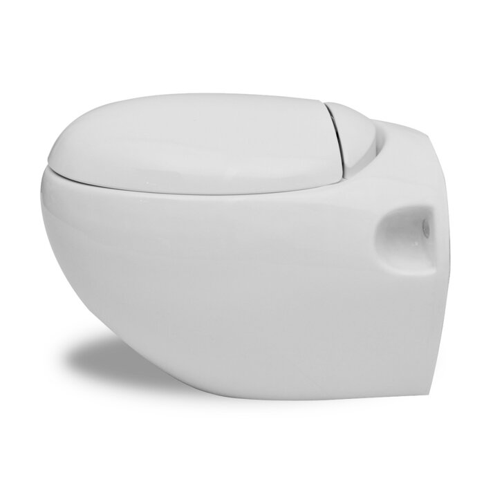 Astounding Wall Hung Toilet And Bidet With Automatic Lowering Seat Alphanode Cool Chair Designs And Ideas Alphanodeonline