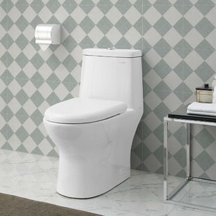 Swiss Madison Ivy® Dual-Flush Elongated One-Piece Toilet (Seat Included)