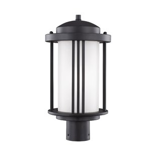 Darby Home Co Dunkley Outdoor 1-Light Lantern Head