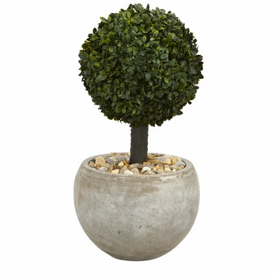 17 Stories Artificial Floor Boxwood Topiary in Planter