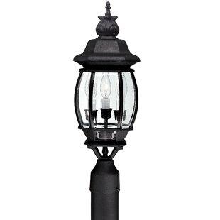 Shop For Herkimer Outdoor 3-Light Lantern Head By Alcott Hill
