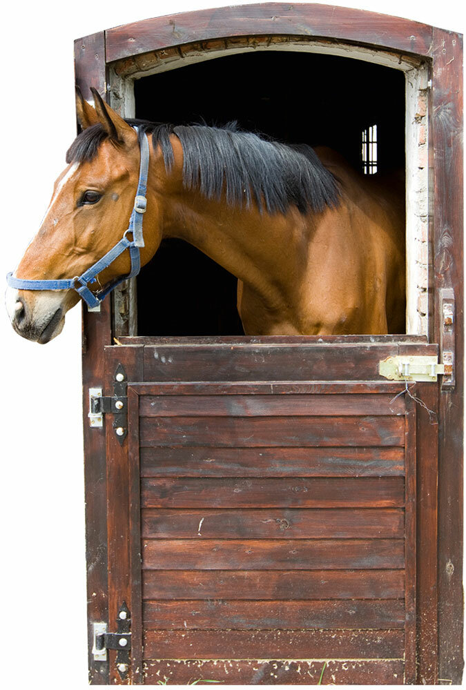 graz design horse stable wall sticker - 85 x 57 cm | wayfair.co.uk