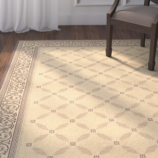 Beasley Garden Gate Indoor/Outdoor Area Rug