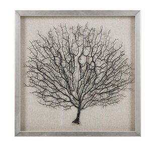 Genial Lauderhill Coral In Shadowbox With Frame Wall Décor