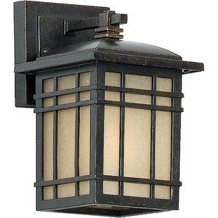Three Posts Woodard Rustic 1-Light Outdoor Wall Lantern