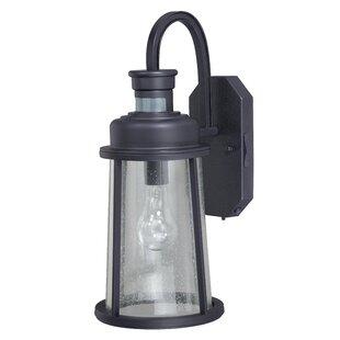 Trent Austin Design Cascades 1-Light Outdoor Wall Lantern