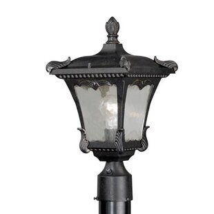 Earl Outdoor 1-Light Lantern Head