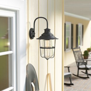 Laurel Foundry Modern Farmhouse Roessler 1-Light Outdoor Wall Lantern
