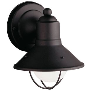 Find for Castro 1-Light Outdoor Barn Light By Longshore Tides