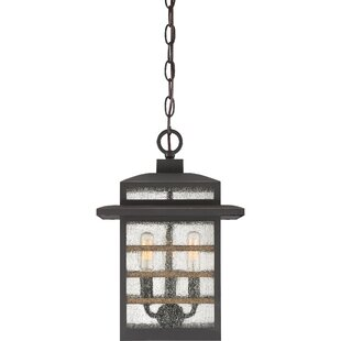 Gracie Oaks Vieira 3-Light Outdoor Hanging Lantern