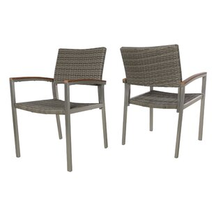 Keeney Outdoor Patio Dining Chair (Set of 2)