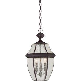 Washington Mews 3-Light Incandescent Outdoor Hanging Lantern