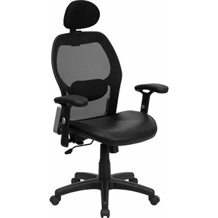 Krout Ergonomic Mesh Task Chair by Symple Stuff Spacial Price