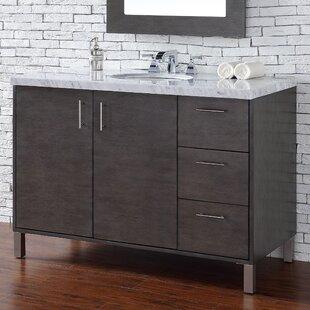 Reviews Elbridge 48 Single Silver Oak Bathroom Vanity Set ByMercury Row