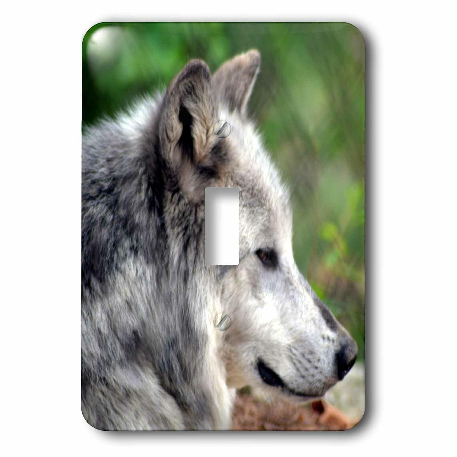 3drose Wolf 1 Gang Toggle Light Switch Wall Plate Wayfair