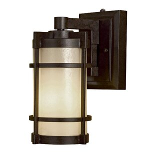 Andrita Court 1-Light Outdoor Wall Lantern