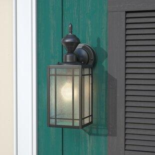 Vidal 1-Light Black Outdoor Wall Lantern