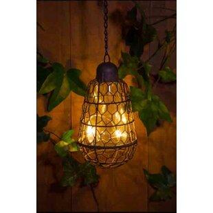 Huskey Outdoor Hanging Lantern Image