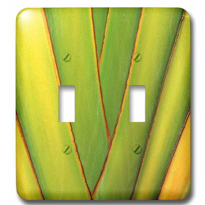 3drose Hawaii Big Island Tropical Plant Abstract 2 Gang Toggle Light Switch Wall Plate Wayfair