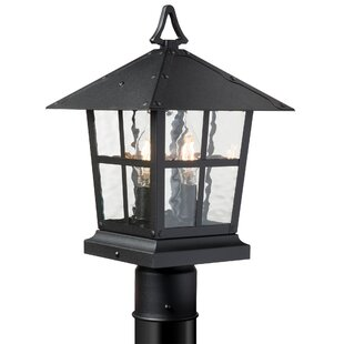 Marlys 2-Light Lantern Head by Canora Grey